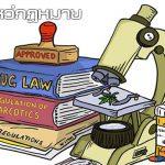 ช่องโหว่กฎหมาย